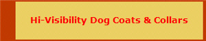 Hi-Visibility Dog Coats & Collars